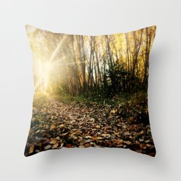 Walking cross autumn Throw Pillow