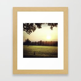Jack Russell Dog in a field Framed Art Print