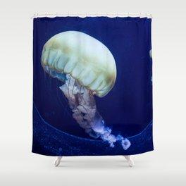 Jellyfish swimming Shower Curtain