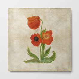 Vintage painting- Bunch of poppies Poppy Flower floral Metal Print