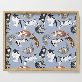 Lounging Cats in Blue Serving Tray