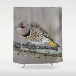 Fabulous Flicker Woodpecker Shower Curtain