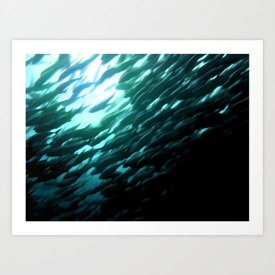Thousands of jack fish Art Print