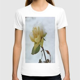 Rose in the Snow T-shirt