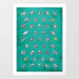 No. 41 - Skulls Art Print