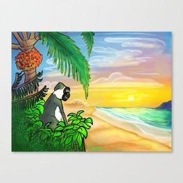 Green Vervet Monkey Nevis Sunset Canvas Print