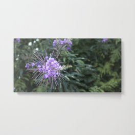 Coldwater Lake Flower Metal Print