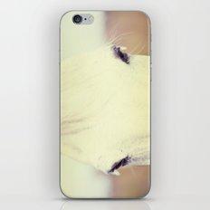 Silver Soul iPhone & iPod Skin