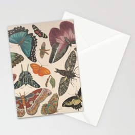 Vintage butterfly collage of antique drawings Stationery Cards