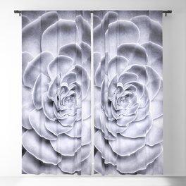Succulent Blackout Curtain