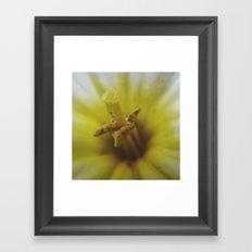A little closer Framed Art Print