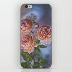 Bounteousness iPhone & iPod Skin