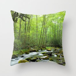 Spring Forest Stream Throw Pillow