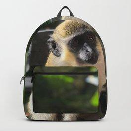 Barbados Green Monkey Backpack