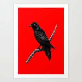 Decorative Chinese Red Black Crow Design Art Print