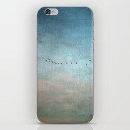 Toward The Sunset iPhone Skin