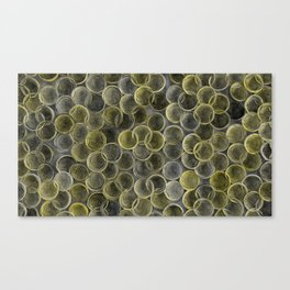 Black, white and yellow spiraled coils Canvas Print