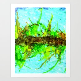 Coral Reeflection Art Print