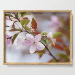 Crabapple Blossoms 2 Serving Tray