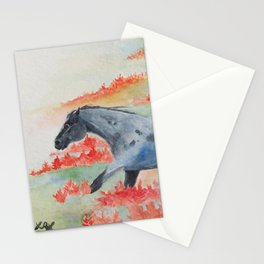 Indian Paintbrush Dakota Horse Stationery Cards