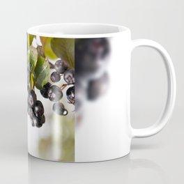 Chokeberries or aronia fruits Coffee Mug