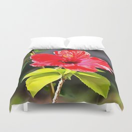 Beautiful Red Tropical Hibiscus Flower Duvet Cover