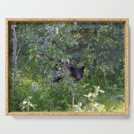 Mother bear hides in the trees- Canadian Rocky Mountains Serving Tray