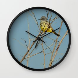 Bird - Western Kingbird - Study 1 Wall Clock