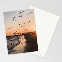 Seagulls and Sunset Stationery Cards