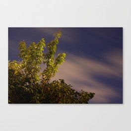 Tree Game Canvas Print