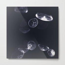 dancing jellyfish #2 Metal Print