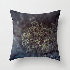 As the summer ends 2 Throw Pillow