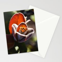 oh hi, ʻohiʻa!  Stationery Cards