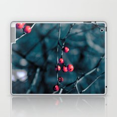 Chilled Berries Laptop & iPad Skin