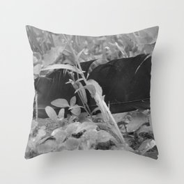 Black plume Throw Pillow