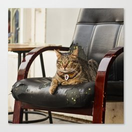 The Catfather Canvas Print