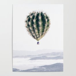 Flying Cactus Poster