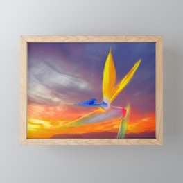Sunset Flow Framed Mini Art Print