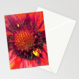 Extreme Indian Blanket Stationery Cards
