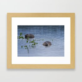 Beavers at Breakfast Framed Art Print