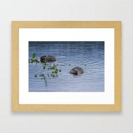 Beavers at Breakfast Framed Art Print
