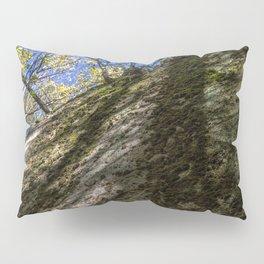 2017-10-02 Pillow Sham