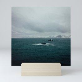 Coast 7 Mini Art Print