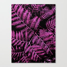 Boysenberry Bracken Canvas Print