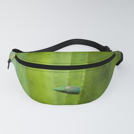 Peekaboo! A gecko in the agave Fanny Pack