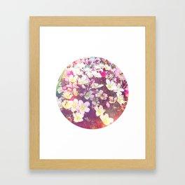 Flowers At The Chalet Framed Art Print