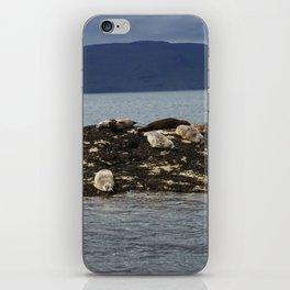 Seal Sisters iPhone Skin
