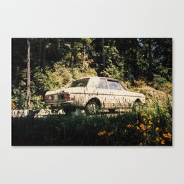 Cortina 02 Canvas Print