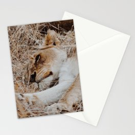Sleeping Lioness Stationery Cards