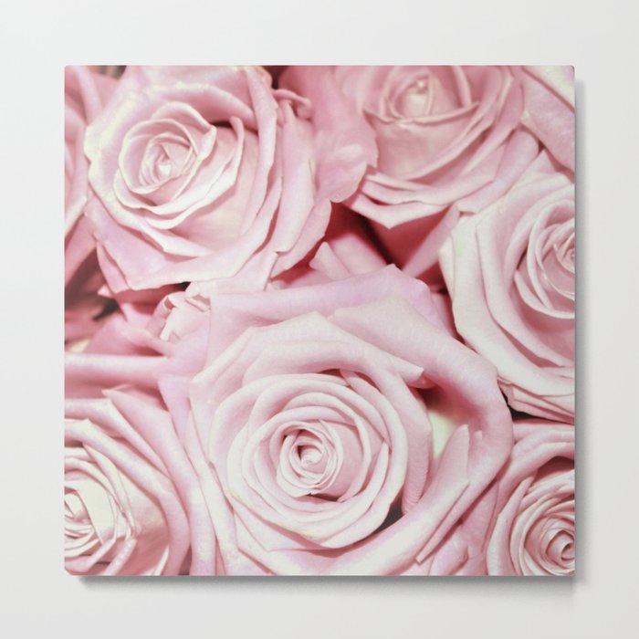 Beautiful bed of pink roses- Floral Rose Flowers Metal Print
